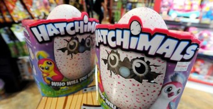 Hatchimals Egg Box